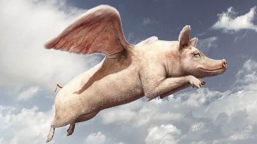 """""""风口吹猪""""的投资只在资本过剩时代管用"""