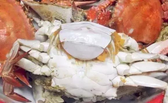 螃蟹,海虾,扇贝,海虹海螺等海鲜的哪些部位不能吃