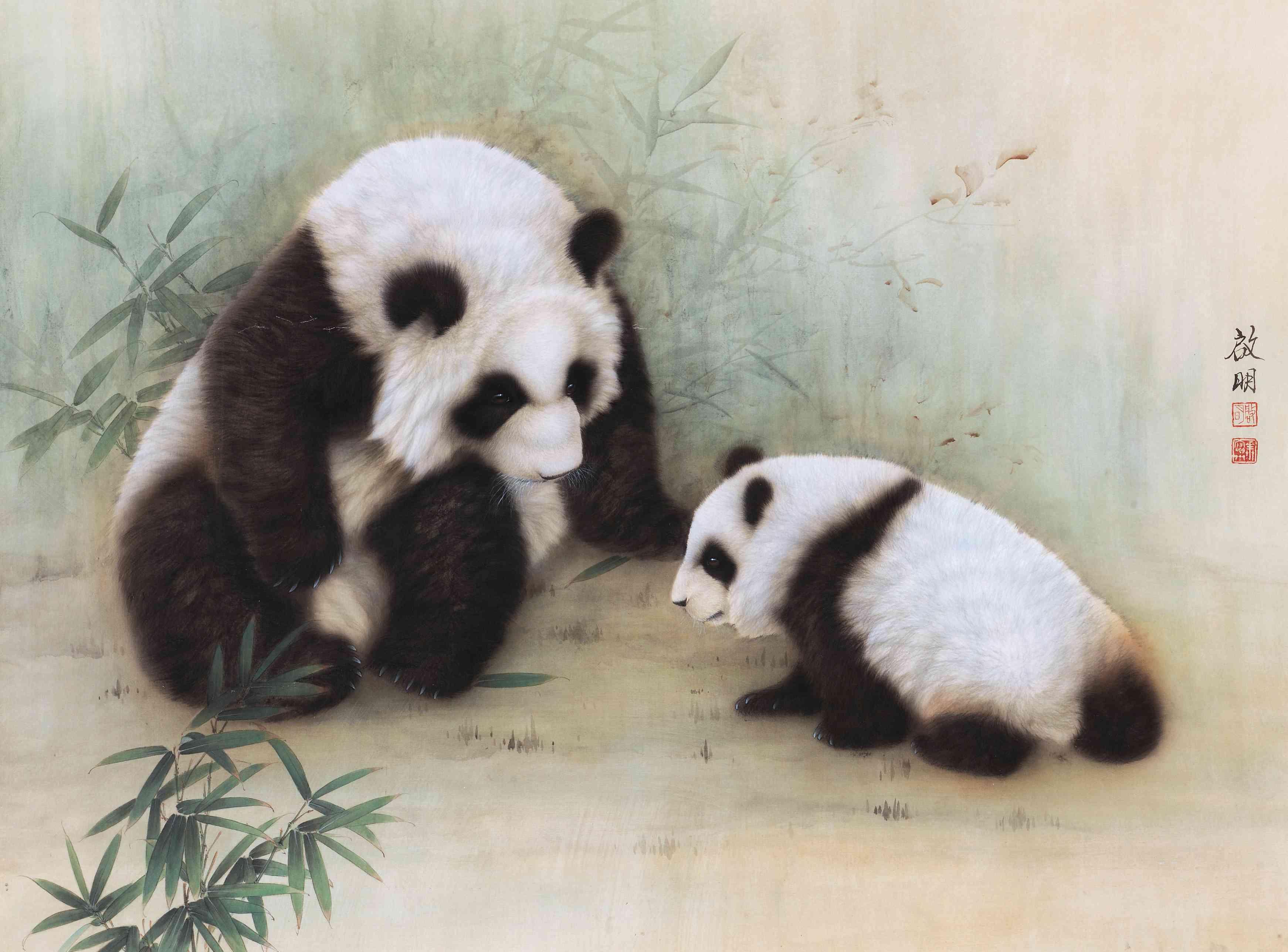熊猫直播陈可爱