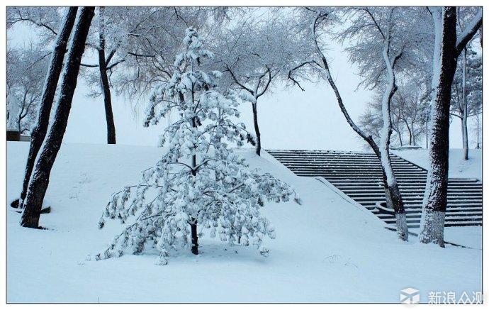 我想说今年的雪景就没有了,坐标唐山_新浪众测