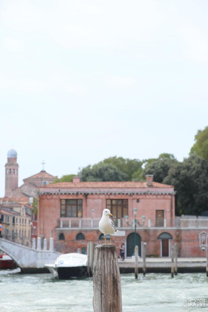 带不走威尼斯的美,我恨不得砸掉相机_新浪众测