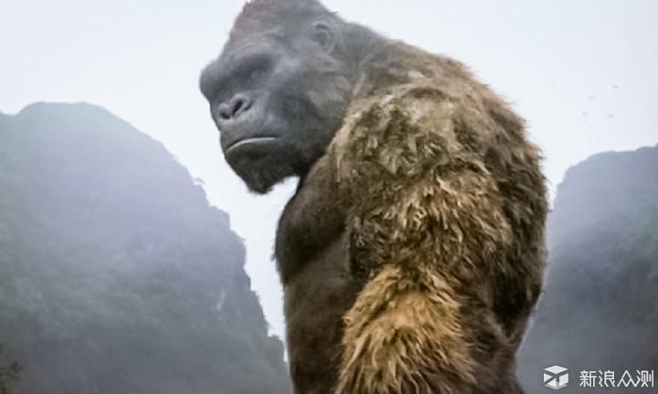 电影推荐《金刚:骷髅岛》