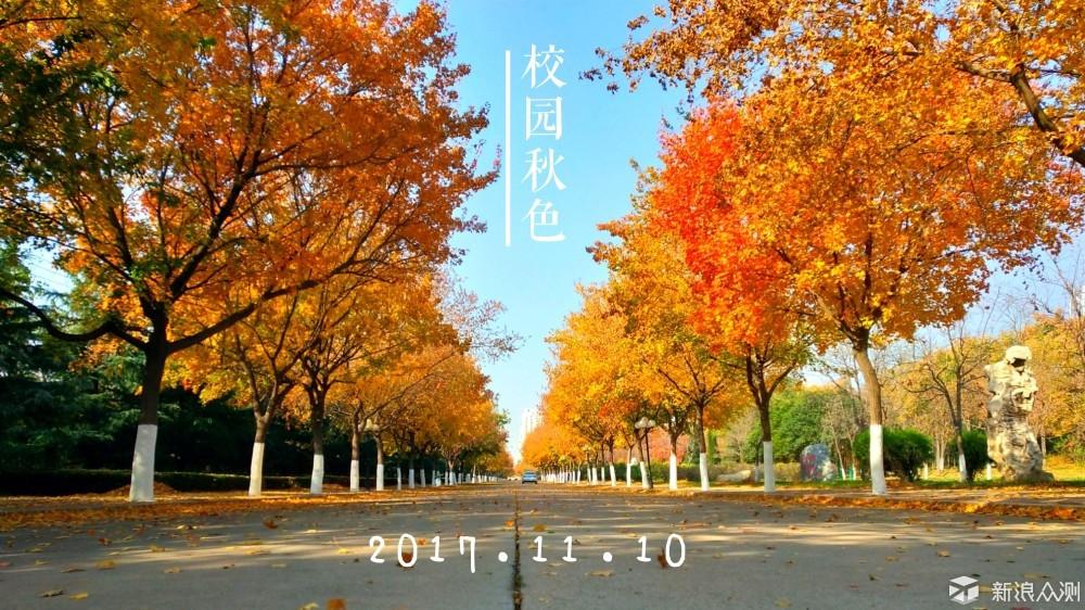 【手机摄影】校园秋色_新浪众测