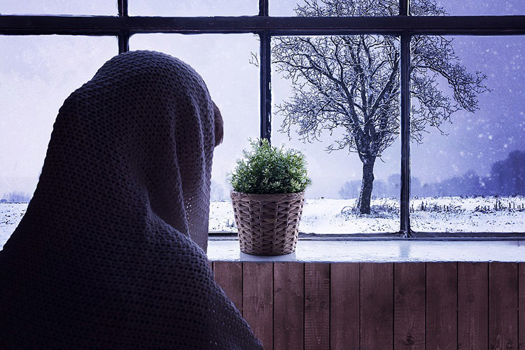 此刻,你的窗外是什么样子?
