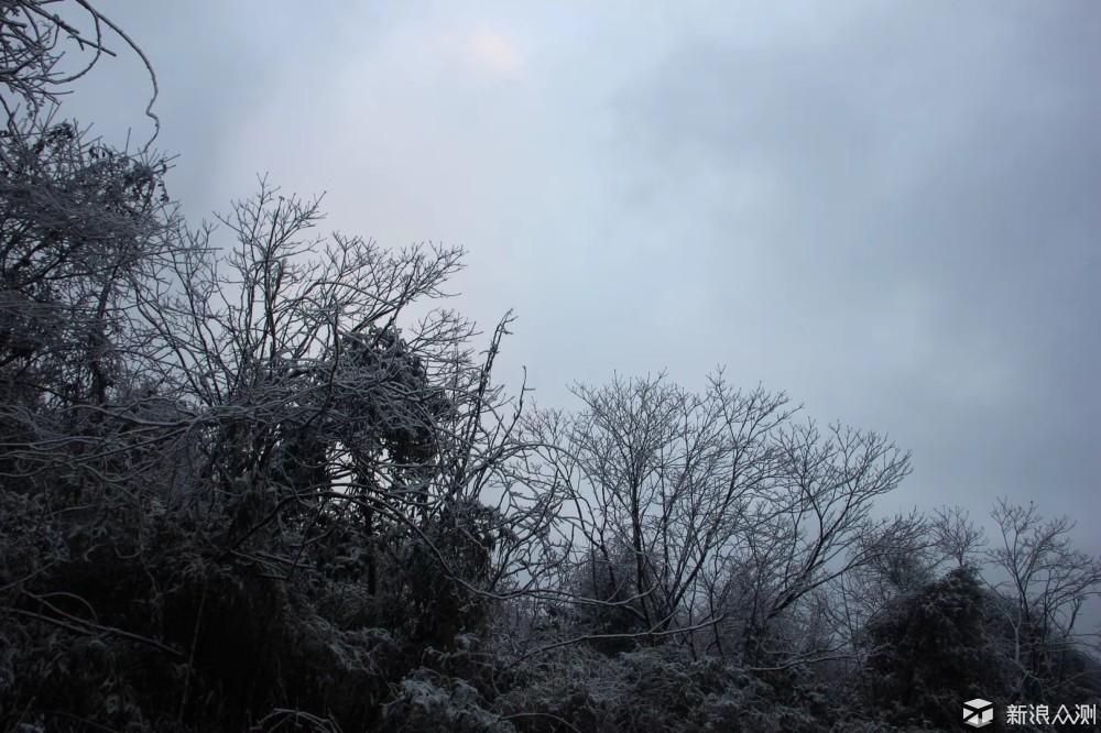 谁说只有北方有雪?_新浪众测