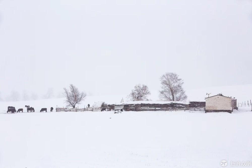 2017年冬天雪景_新浪众测