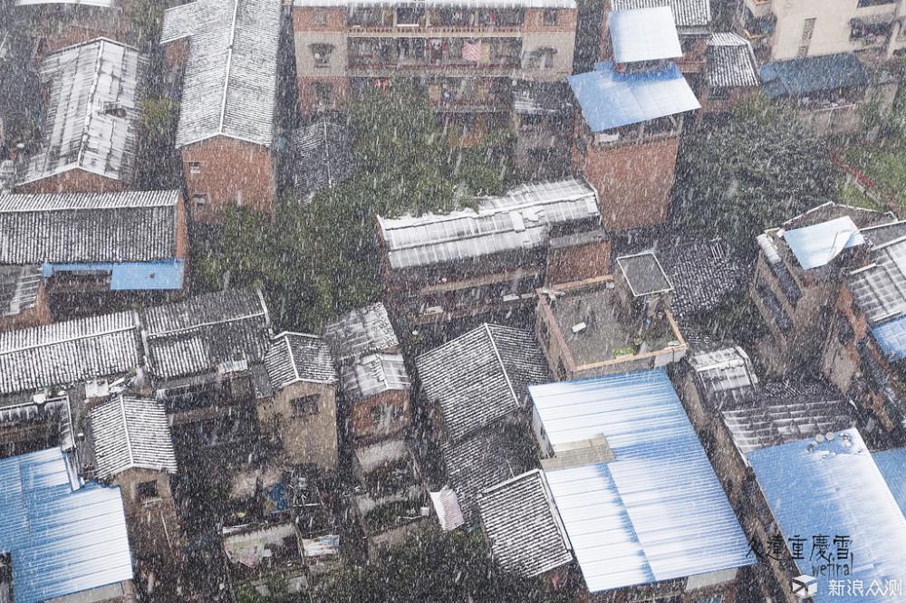 北方下雪不新鲜,重庆的雪才弥足珍贵!_新浪众测