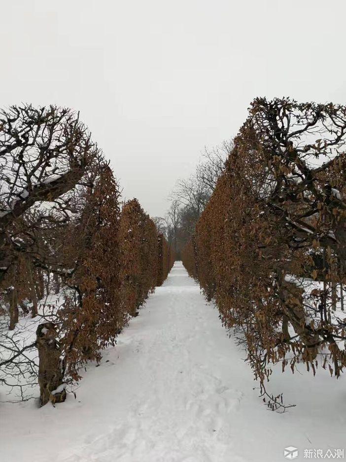 迎接新雪,拥抱美景,展望未来_新浪众测