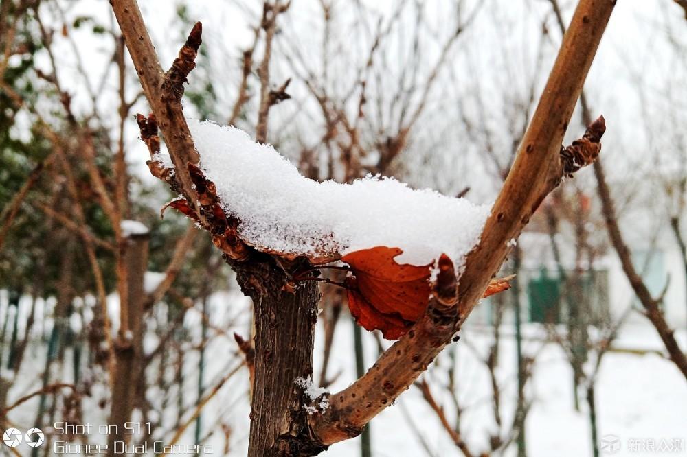 2018的第一场雪_新浪众测