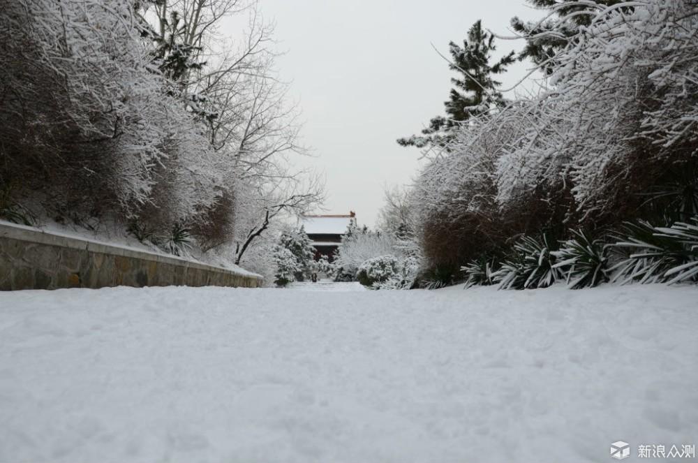 2018年的第一场雪  比以往时候来的更晚一些_新浪众测