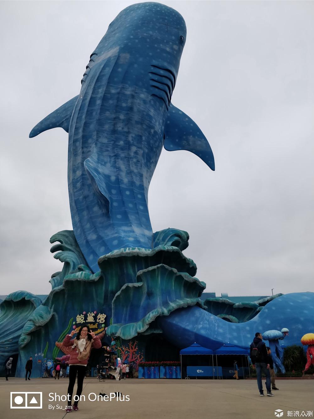 【游记】带上一加5,畅玩珠海长隆海洋王国_新浪众测