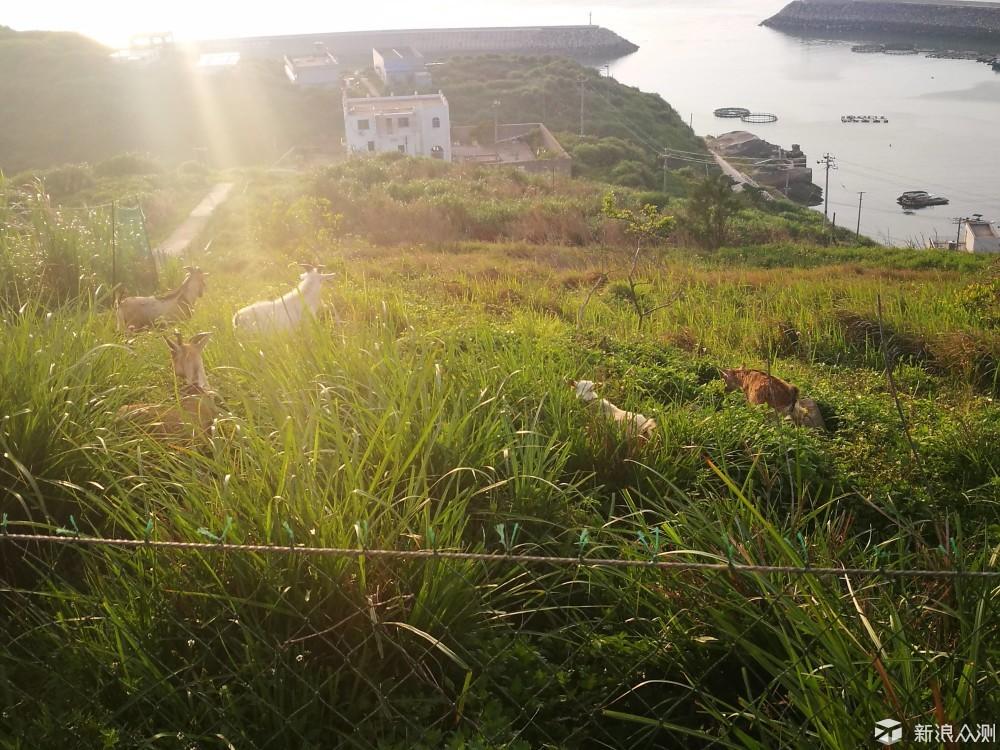少有人去的岛屿--瑞安北麂岛_新浪众测