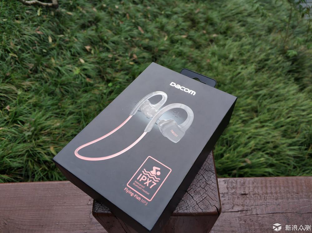 内置闪存的蓝牙耳机,百元级佳品Dacom飞鱼P10_新浪众测