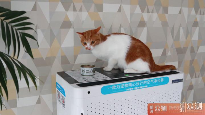 给宠物更舒适的家, 安美瑞X8宠物空气净化器_新浪众测