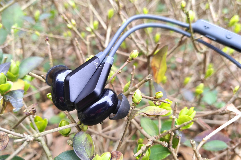 音质玄学公开课,小鸟音响TRACK无线耳机体验