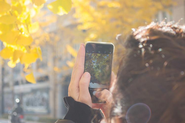 你用过拍照最好的手机是?