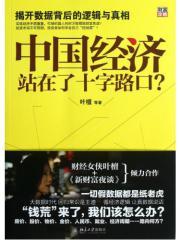 中国经济站在了十字路口?