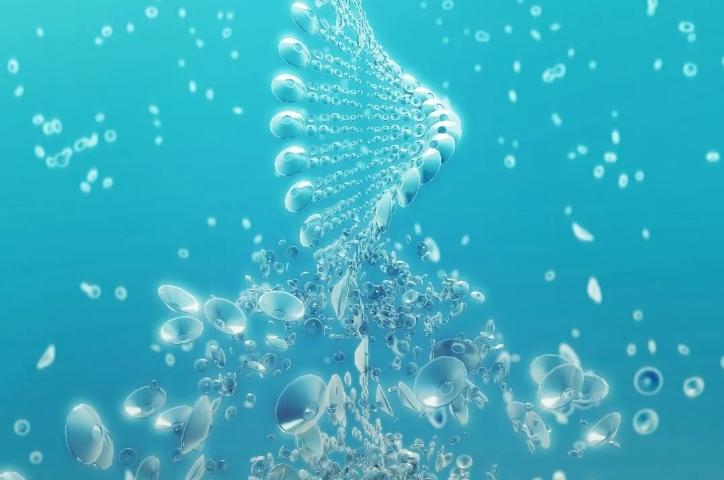 全产业链布局深入,华熙生物要做生物科技的3M?